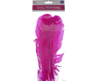 HOT PINK QUILL FEATHERS 10-12IN 4 COUNT