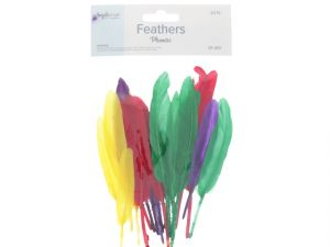 FEATHER 20 PC
